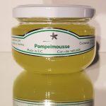 Pompelmoes luchtverfrisser 112g aroma therapie wellness sofie brakel